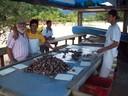Visita a maricultura na Cocanha em Caraguatatuba-SP (2)